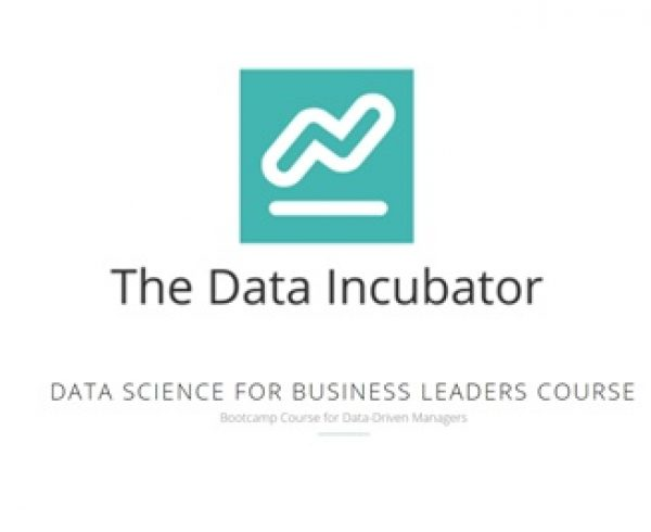 Data Science for Business Leaders Online Course - Education